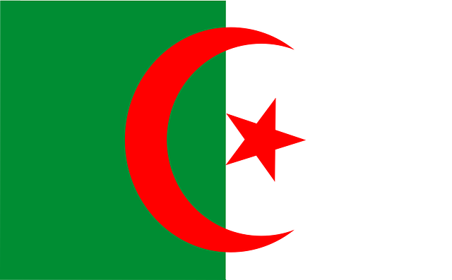 Algeria Business Visa (Algeria Flag)