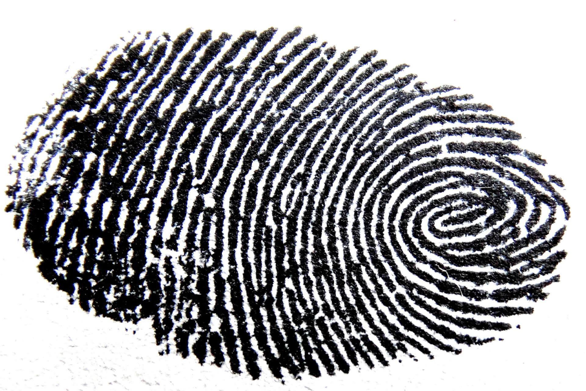 fingerprint34