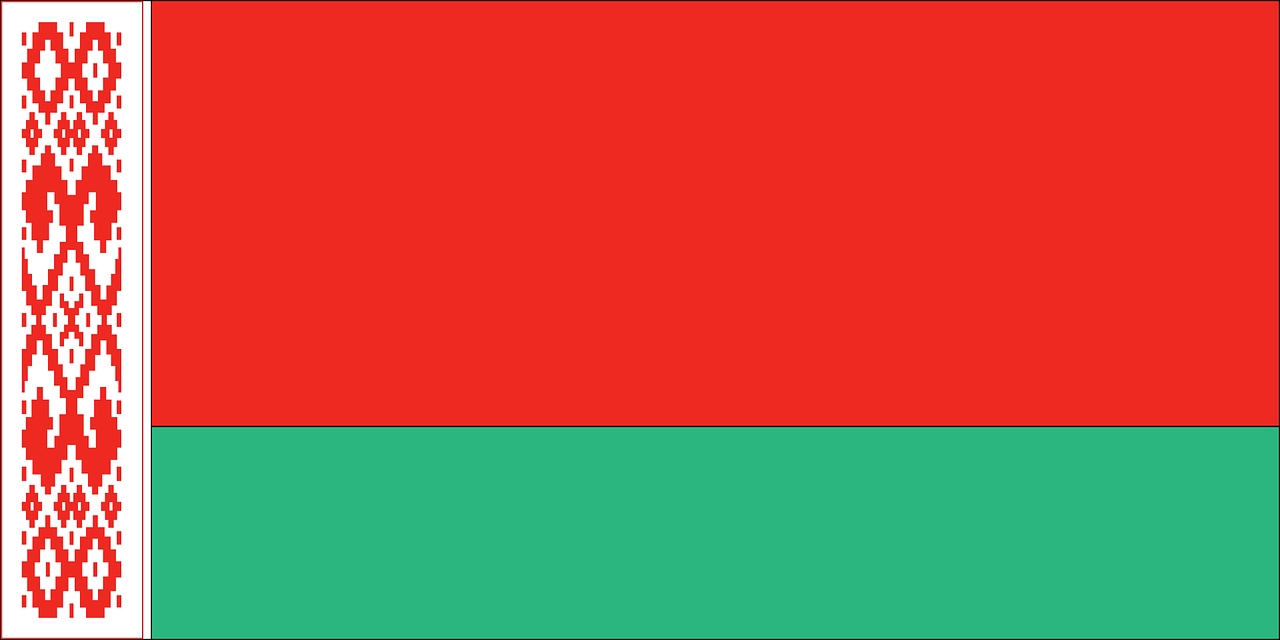 Belarus Business Visa (Belarus Flag)