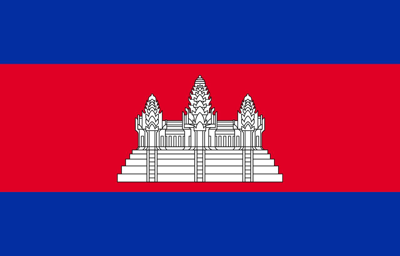 Cambodia Business Visa (Cambodia Flag)