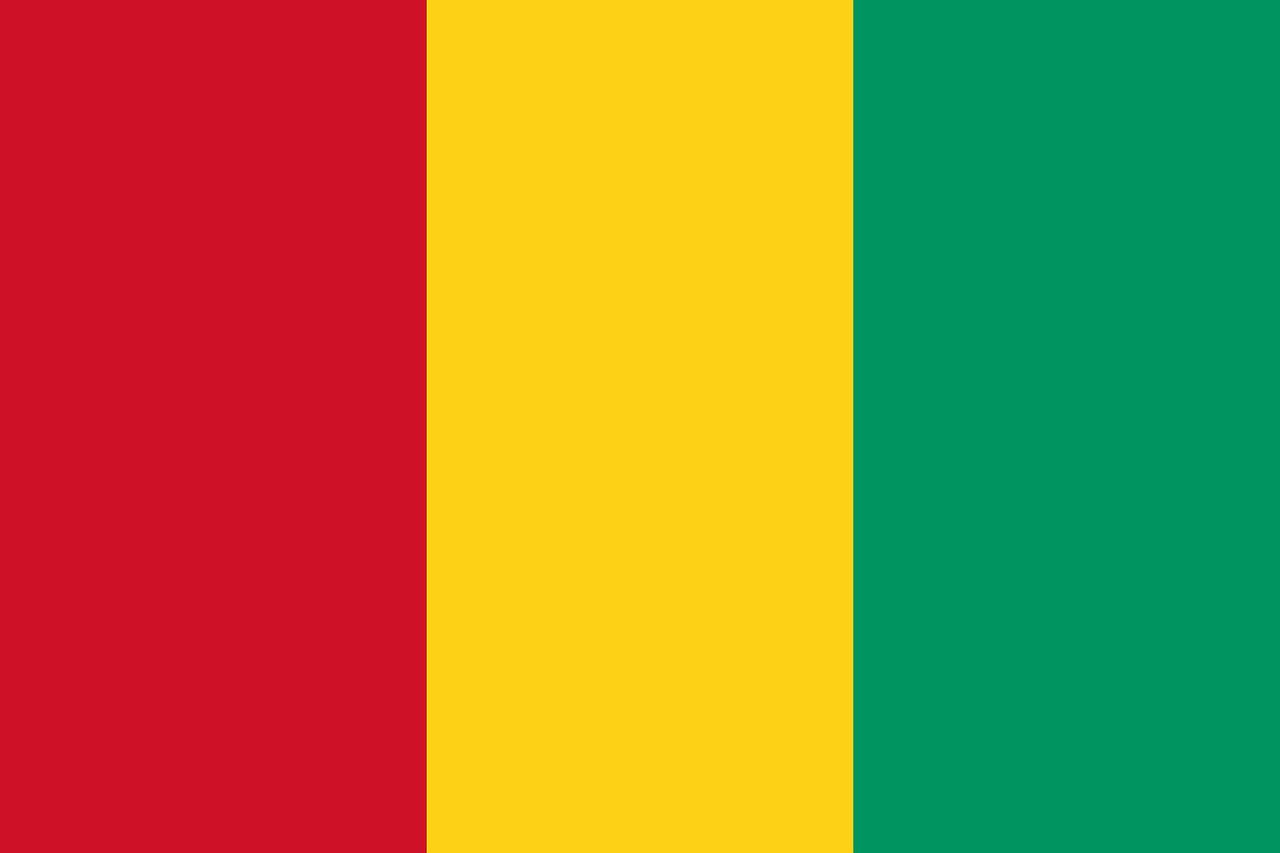 Guinea Tourist Visa (Guinea Flag)