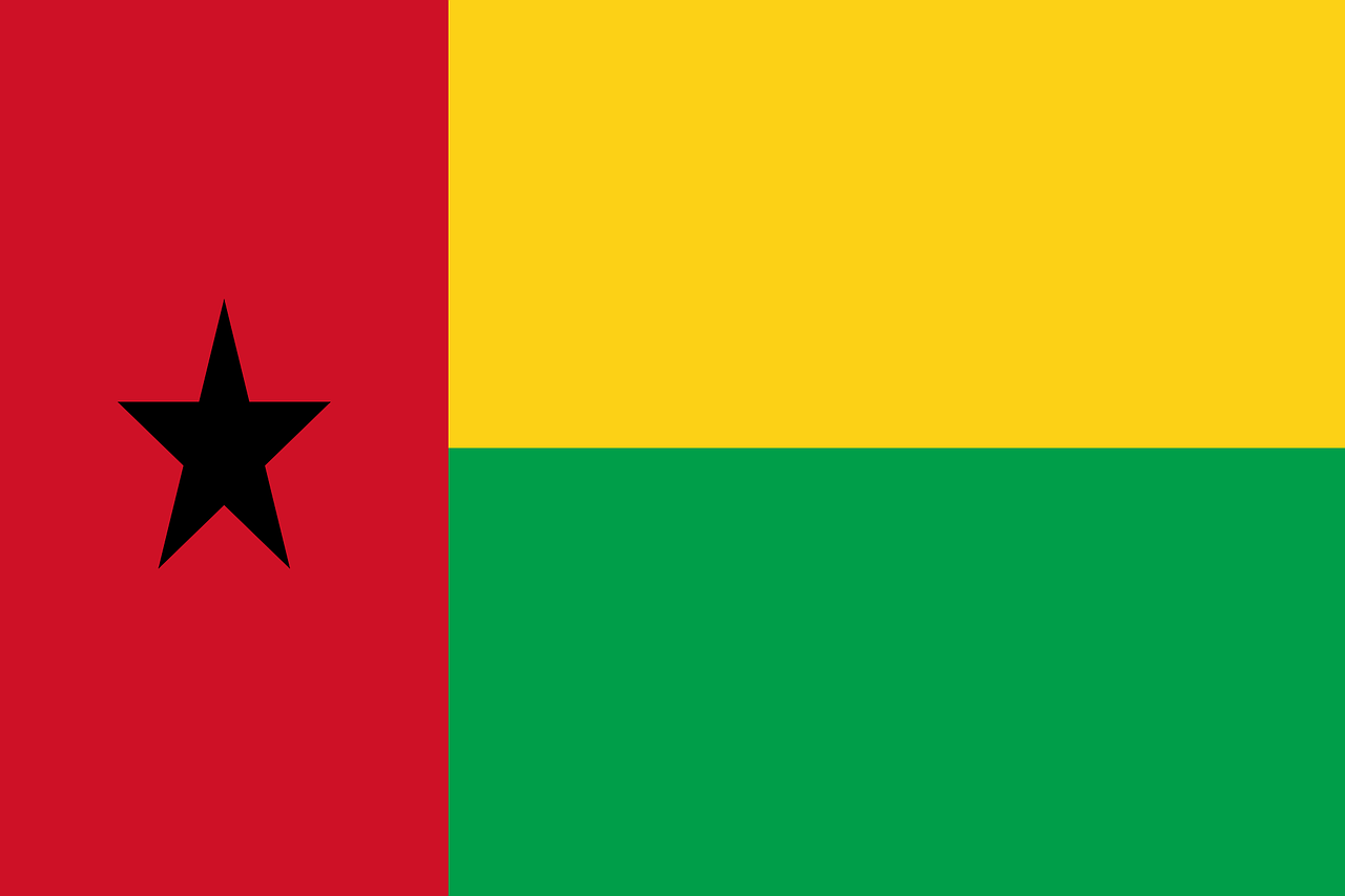 guinea business visa