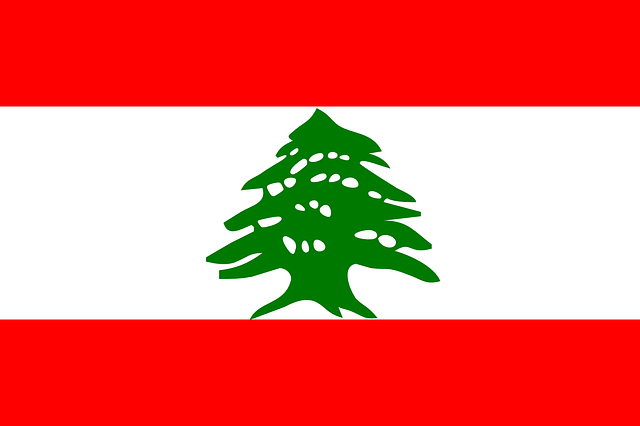 Lebanon tourist visa (Lebanon flag)