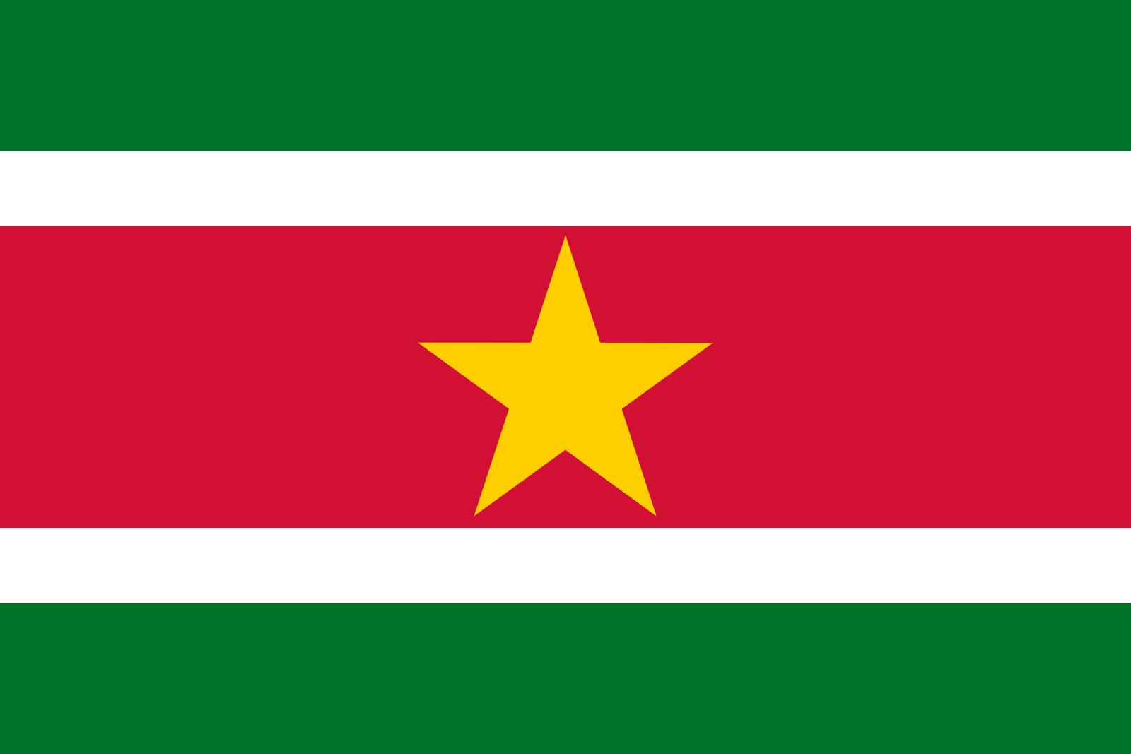 Suriname Tourist Visa (Suriname Flag)