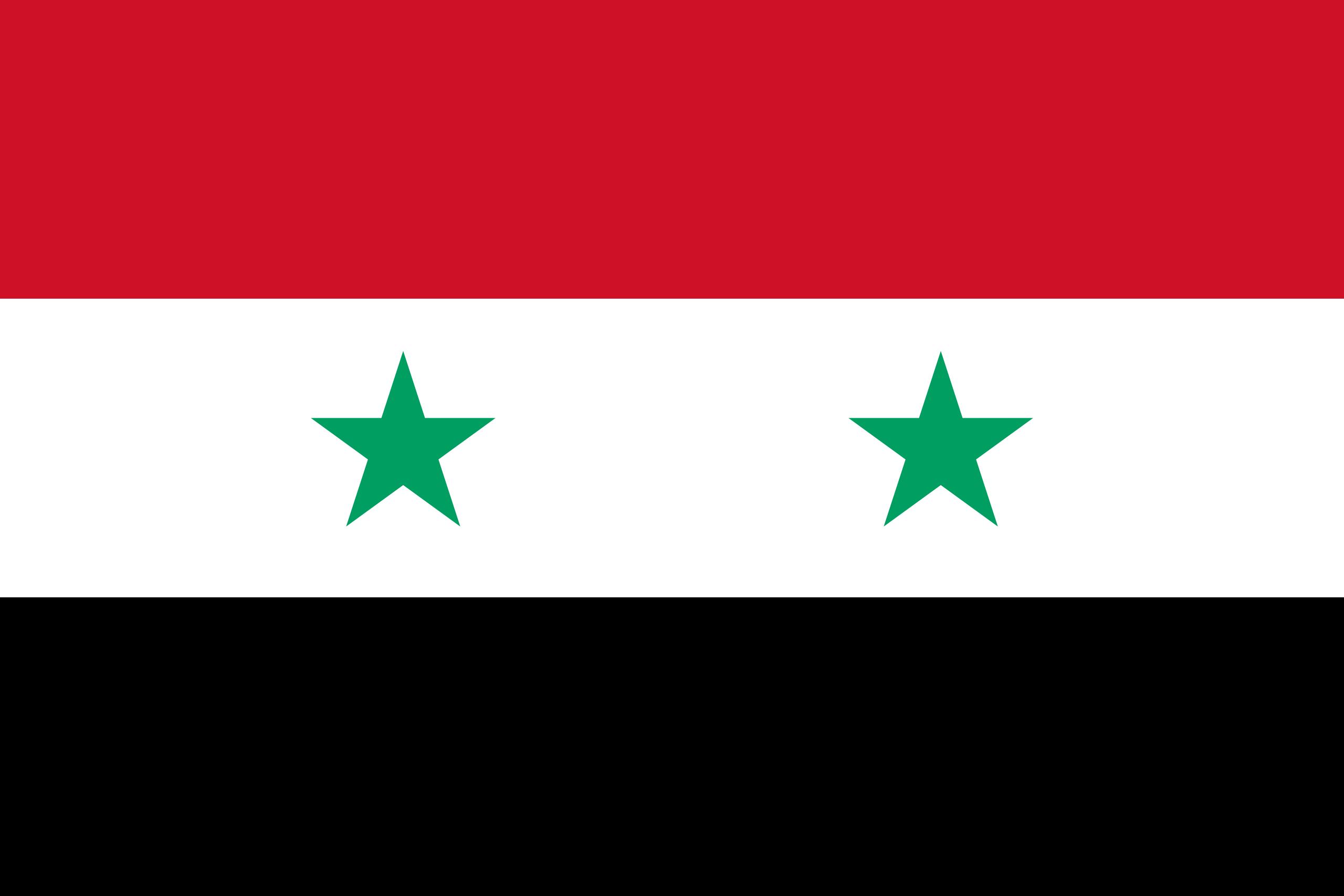 Syria Business Visa (Syrian Flag)