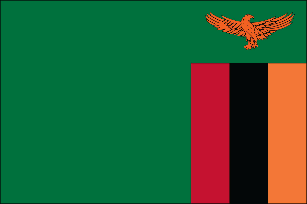 Zambia Business Visa (Zambia Flag)