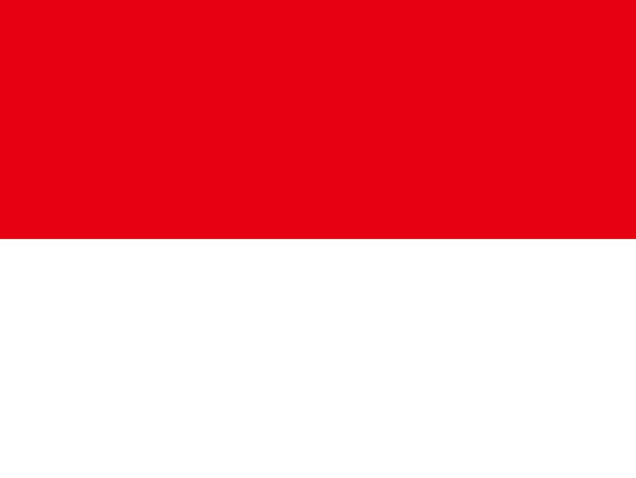 Indonesia Business Visa